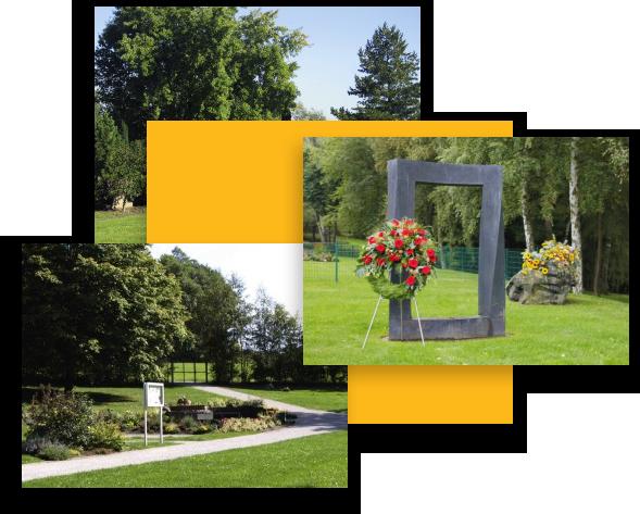 Rasengrab inklusive gärtnerischer Pflege vom Urnengrab